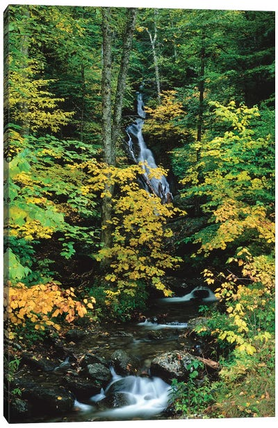 Moss Glen Falls, Vermont Route 100, Granville Reservation State Park, Vermont, USA II Canvas Art Print