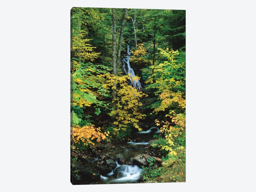 Moss Glen Falls, Vermont Route 100, Granville Reservation State Park, Vermont, USA II by Panoramic Images 1-piece Canvas Wall Art