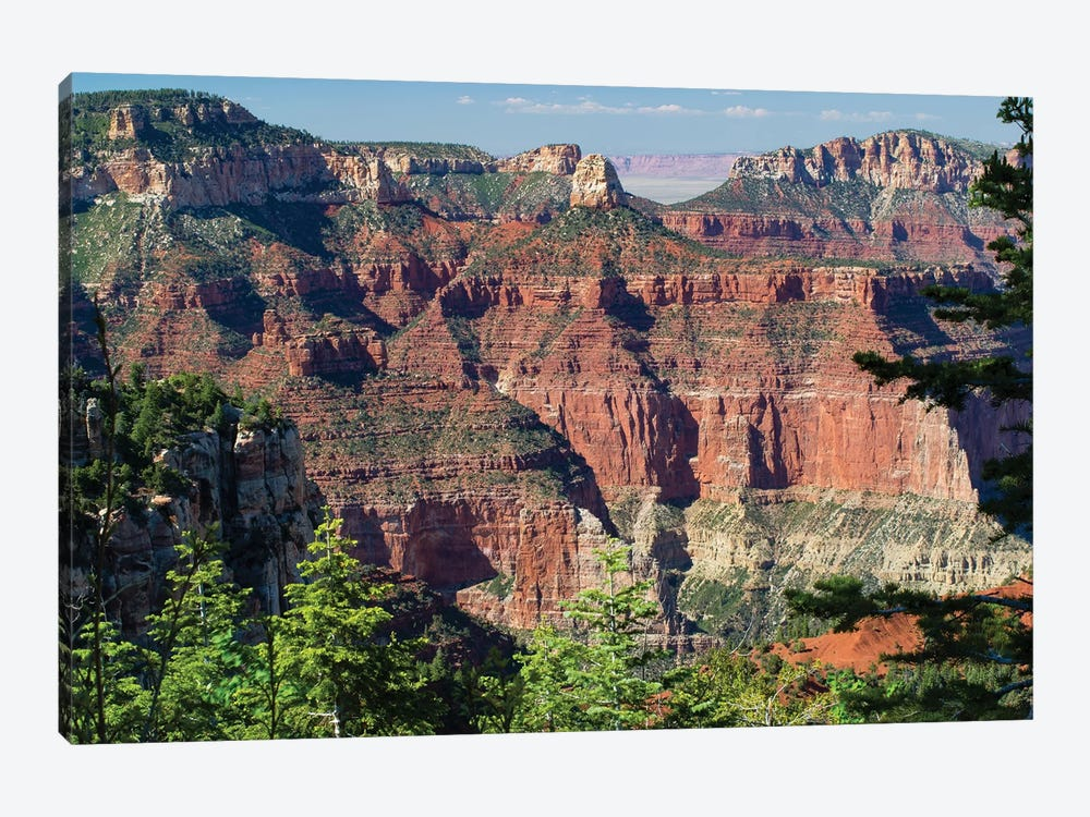 North And South Rims, Grand Canyon National Park, Arizona, USA III by Panoramic Images 1-piece Art Print