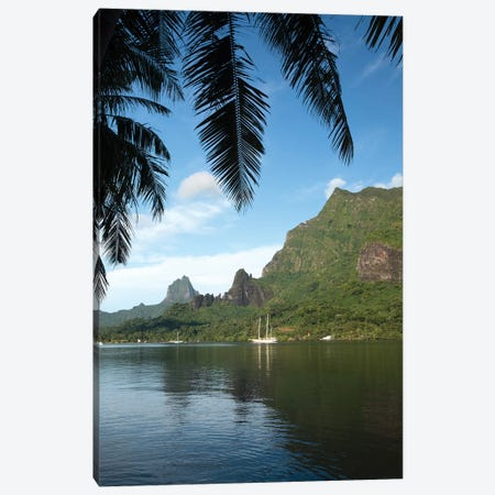 Palm Tree With Boat In The Background, Moorea, Tahiti, French Polynesia I Canvas Print #PIM14766} by Panoramic Images Canvas Art Print