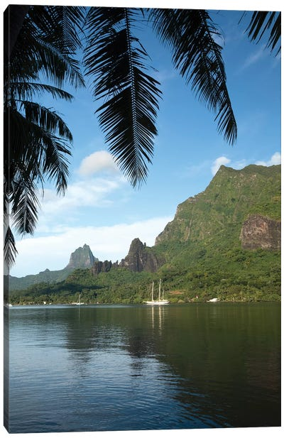 Palm Tree With Boat In The Background, Moorea, Tahiti, French Polynesia I Canvas Art Print