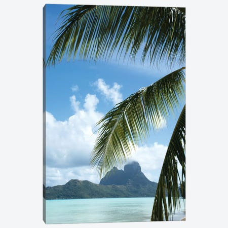 Palm Tree With Island In The Background, Bora Bora, Society Islands, French Polynesia Canvas Print #PIM14768} by Panoramic Images Canvas Wall Art