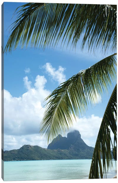 Palm Tree With Island In The Background, Bora Bora, Society Islands, French Polynesia Canvas Art Print