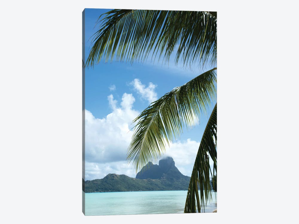 Palm Tree With Island In The Background, Bora Bora, Society Islands, French Polynesia by Panoramic Images 1-piece Art Print