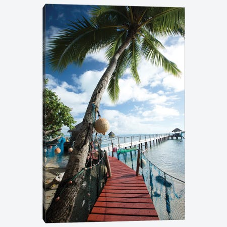 Palm Trees And Dock, Bora Bora, Society Islands, French Polynesia Canvas Print #PIM14770} by Panoramic Images Canvas Print