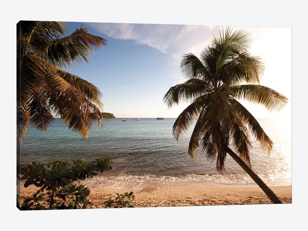 Palm Trees On Beach At Sunset, Culebra Island, Puerto Rico 1-piece Canvas Print
