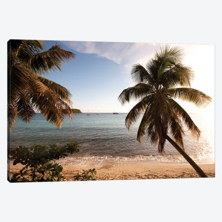 Palm Trees On Beach At Sunset, Culebra Island, Puerto Rico 3-Piece Canvas #PIM14773} by Panoramic Images Canvas Art Print