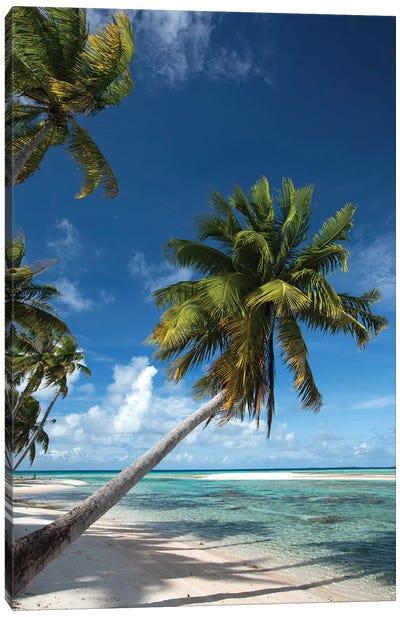 Palm Trees On The Beach, Bora Bora, Society Islands, French Polynesia I Canvas Art Print