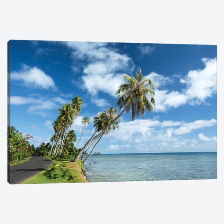 Palm Trees On The Beach, Bora Bora, Society Islands, French Polynesia II Canvas Print #PIM14775} by Panoramic Images Canvas Art
