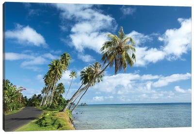 Palm Trees On The Beach, Bora Bora, Society Islands, French Polynesia II Canvas Art Print