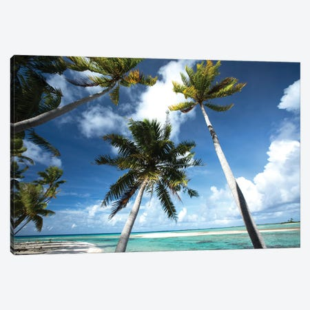 Palm Trees On The Beach, Bora Bora, Society Islands, French Polynesia III Canvas Print #PIM14776} by Panoramic Images Canvas Artwork