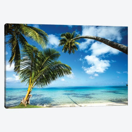 Palm Trees On The Beach, Bora Bora, Society Islands, French Polynesia V Canvas Print #PIM14778} by Panoramic Images Art Print