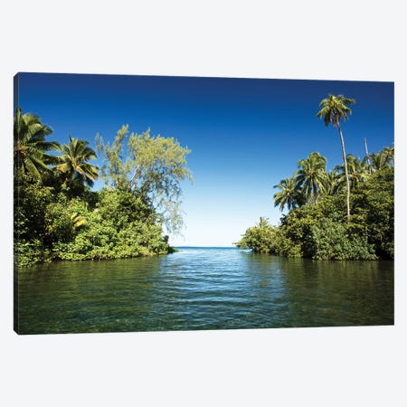 Palm Trees On The Coast, Moorea, Tahiti, French Polynesia Canvas Print #PIM14781} by Panoramic Images Canvas Art