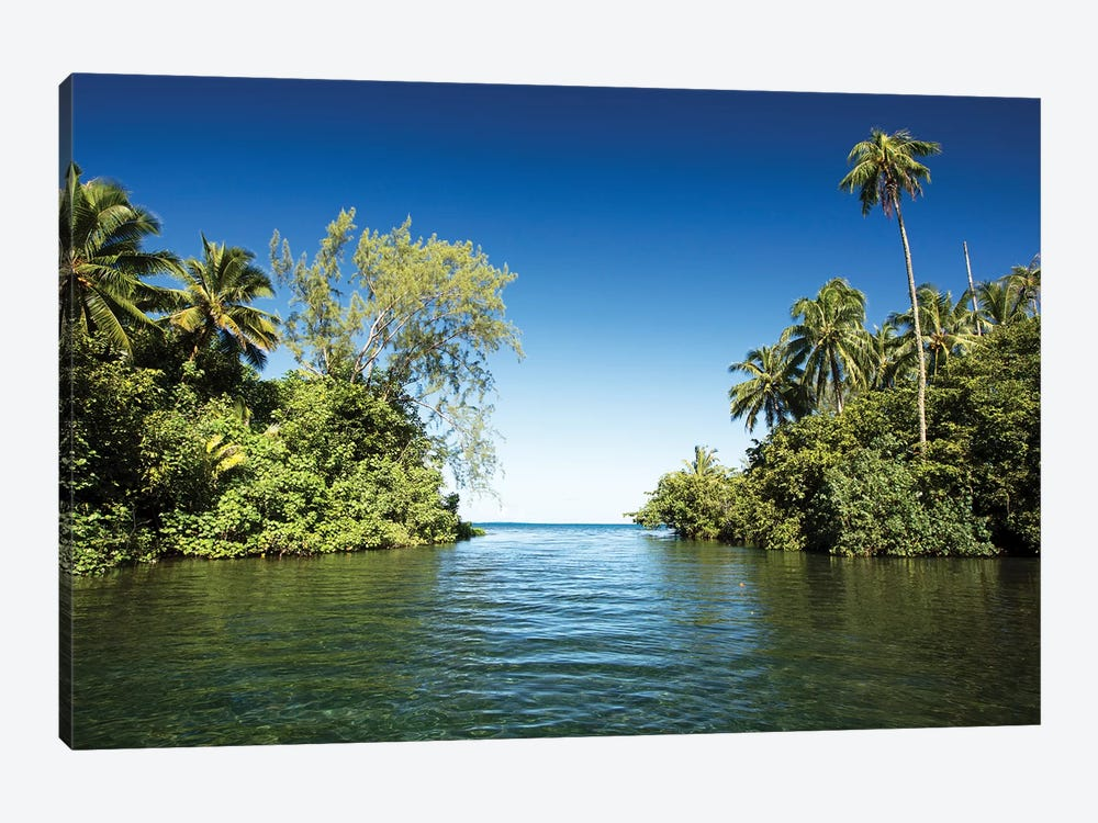 Palm Trees On The Coast, Moorea, Tahiti, French Polynesia by Panoramic Images 1-piece Canvas Wall Art