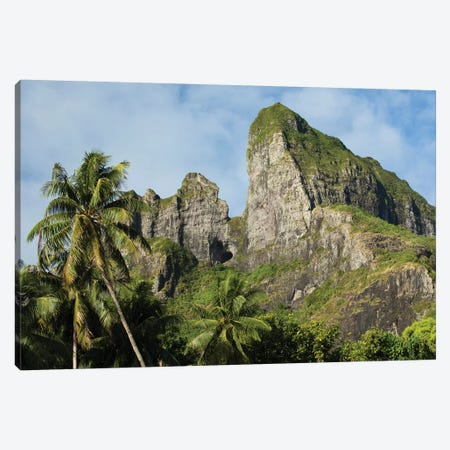 Palm Trees With Mountain Peak In The Background, Bora Bora, Society Islands, French Polynesia Canvas Print #PIM14782} by Panoramic Images Canvas Art