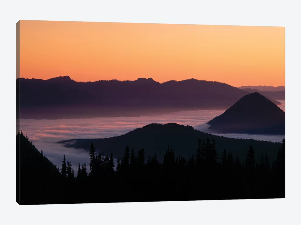 Foggy Mountainscape, Mount Rainier National Park, Washington, USA by Panoramic Images 1-piece Canvas Art