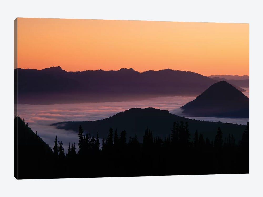 Foggy Mountainscape, Mount Rainier National Park, Washington, USA by Panoramic Images 1-piece Canvas Art
