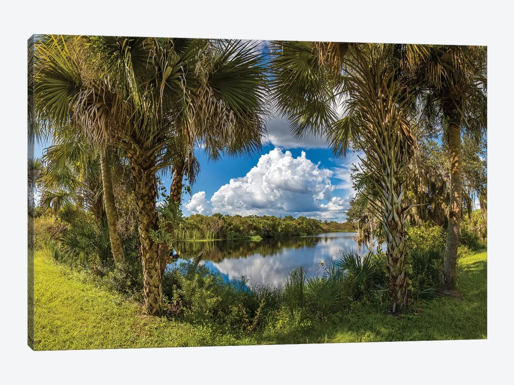 Reflection Of Clouds On Water, Deer Prairie Creek Preserve, Venice, Sarasota County, Florida, USA by Panoramic Images 1-piece Canvas Wall Art