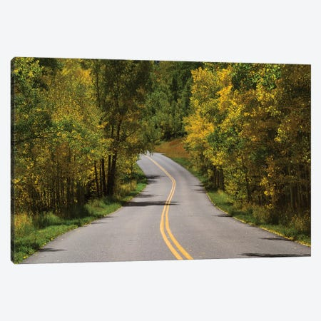 Road Passing Through A Forest, Maroon Bells, Maroon Creek Valley, Aspen, Pitkin County, Colorado, USA I Canvas Print #PIM14837} by Panoramic Images Canvas Art Print