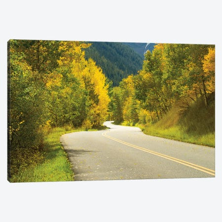 Road Passing Through A Forest, Maroon Bells, Maroon Creek Valley, Aspen, Pitkin County, Colorado, USA II Canvas Print #PIM14838} by Panoramic Images Canvas Art
