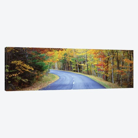 Road Passing Through A Forest, Park Loop Road, Acadia National Park, Maine, USA Canvas Print #PIM14840} by Panoramic Images Canvas Print
