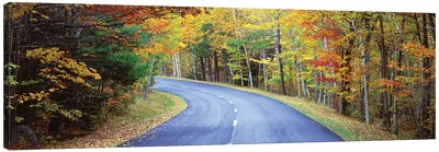 Road Passing Through A Forest, Park Loop Road, Acadia National Park, Maine, USA Canvas Art Print