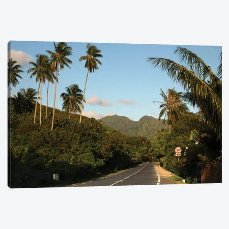 Road With Mountain Peak In The Background, Moorea, Tahiti, French Polynesia II 3-Piece Canvas #PIM14846} by Panoramic Images Canvas Art