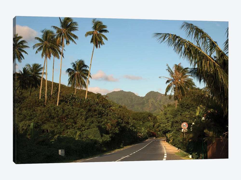 Road With Mountain Peak In The Background, Moorea, Tahiti, French Polynesia II by Panoramic Images 1-piece Canvas Print