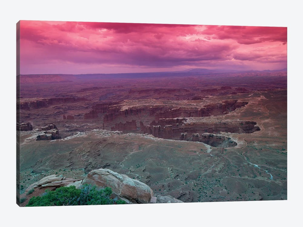 Rock Formations At Canyonlands National Park, Moab, Utah, USA by Panoramic Images 1-piece Art Print