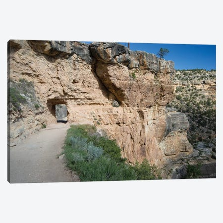 Rock Formations At Grand Canyon National Park, Arizona, USA II Canvas Print #PIM14850} by Panoramic Images Canvas Artwork
