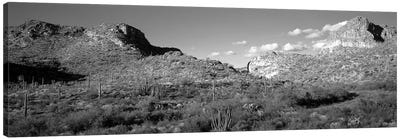 Rock Formations, Ajo Mountain Drive, Organ Pipe Cactus National Monument, Arizona, USA (Black And White) Canvas Art Print