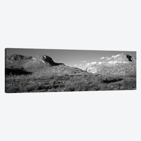 Rock Formations, Ajo Mountain Drive, Organ Pipe Cactus National Monument, Arizona, USA (Black And White) Canvas Print #PIM14855} by Panoramic Images Canvas Print
