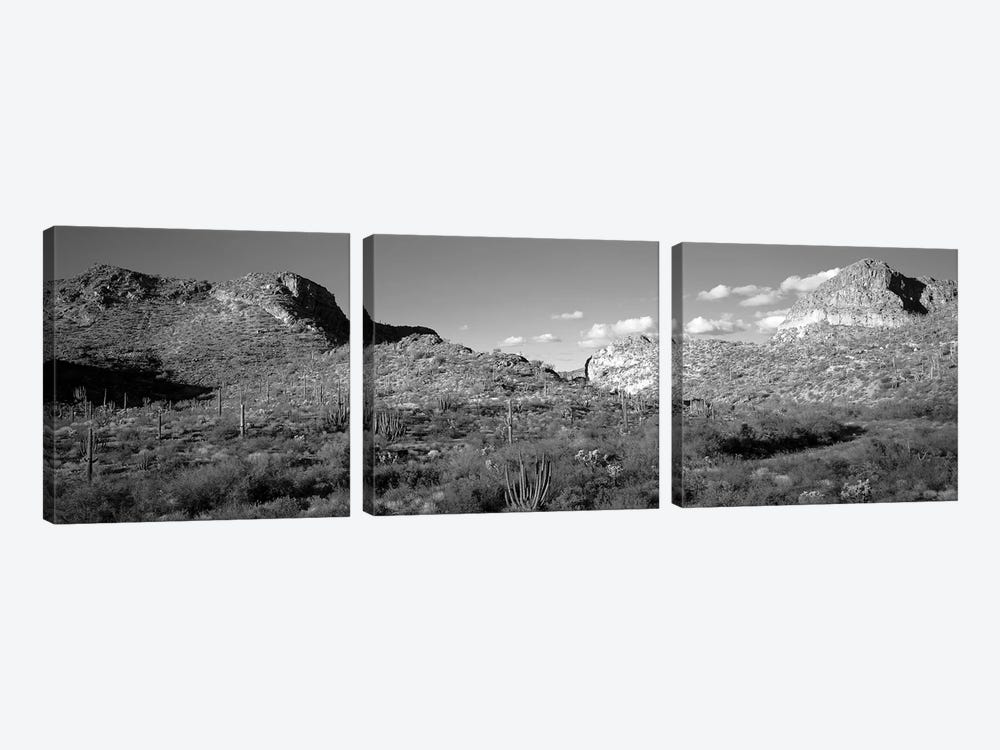 Rock Formations, Ajo Mountain Drive, Organ Pipe Cactus National Monument, Arizona, USA (Black And White) by Panoramic Images 3-piece Canvas Art Print
