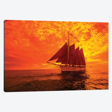 Sailboat And Tall Ship The Pacific Ocean, Dana Point Harbor, Dana Point, Orange County, California, USA II Canvas Print #PIM14866} by Panoramic Images Canvas Artwork