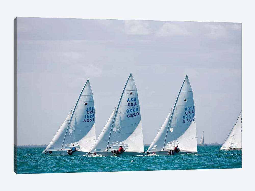 Sailboats In Bacardi Star Regatta, Miami, Florida, USA by Panoramic Images 1-piece Canvas Art Print