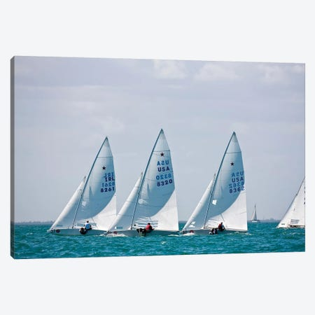 Sailboats In Bacardi Star Regatta, Miami, Florida, USA Canvas Print #PIM14875} by Panoramic Images Canvas Print