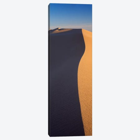 Sand Dunes In A Desert, Algodones Dunes, California, USA Canvas Print #PIM14878} by Panoramic Images Canvas Artwork