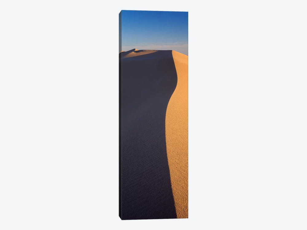 Sand Dunes In A Desert, Algodones Dunes, California, USA by Panoramic Images 1-piece Canvas Wall Art