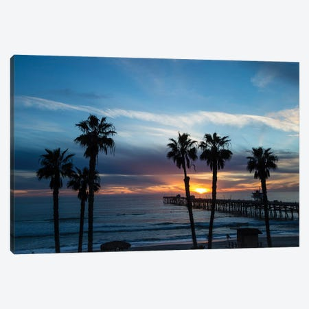 Silhouette Of Palm Trees On The Beach, Laguna Beach, California, USA Canvas Print #PIM14910} by Panoramic Images Art Print