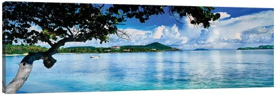 St. Johns Bay, Cabes Point, Sapphire Beach, St. Thomas, U.S. Virgin Islands, USA Canvas Art Print