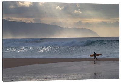 Surfer Walking On The Beach, Hawaii, USA I Canvas Art Print