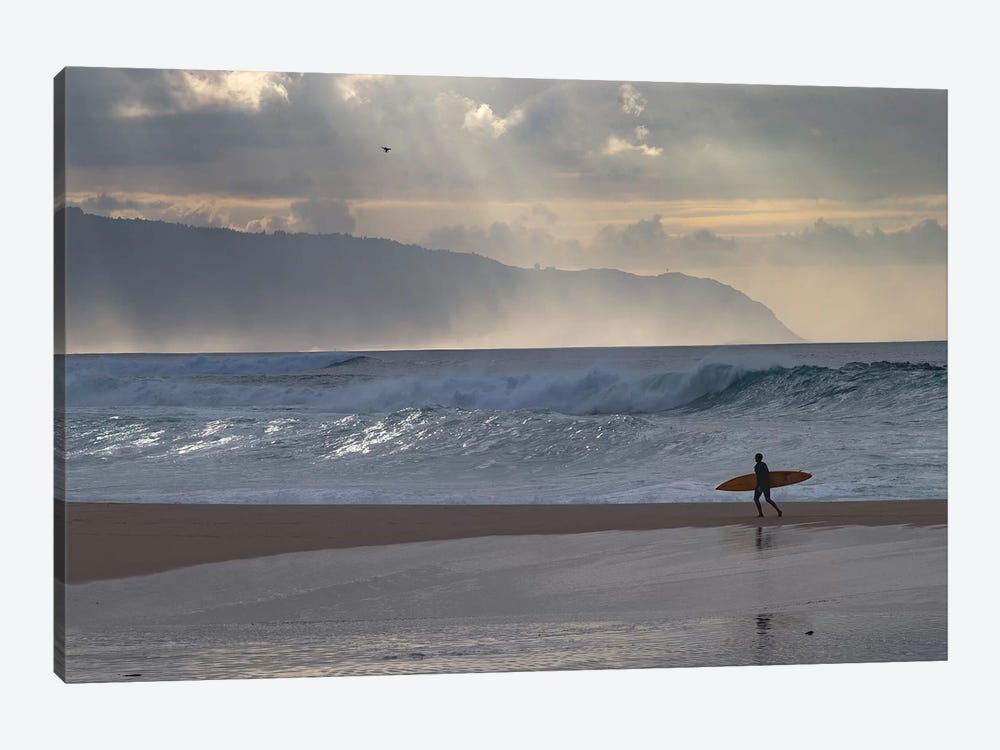 Surfer Walking On The Beach, Hawaii, USA I by Panoramic Images 1-piece Canvas Wall Art
