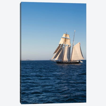 Tall Ship In The Pacific Ocean, Dana Point Harbor, Orange County, California, USA Canvas Print #PIM14958} by Panoramic Images Canvas Art Print
