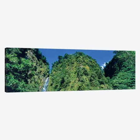 Trafalgar Falls, Dominica, Caribbean Canvas Print #PIM14964} by Panoramic Images Canvas Print
