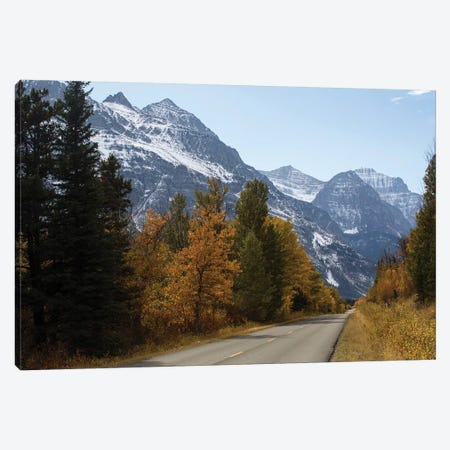 Trees Along A Road With Mountain Range In The Background, Glacier National Park, Montana, USA Canvas Print #PIM14967} by Panoramic Images Canvas Art Print