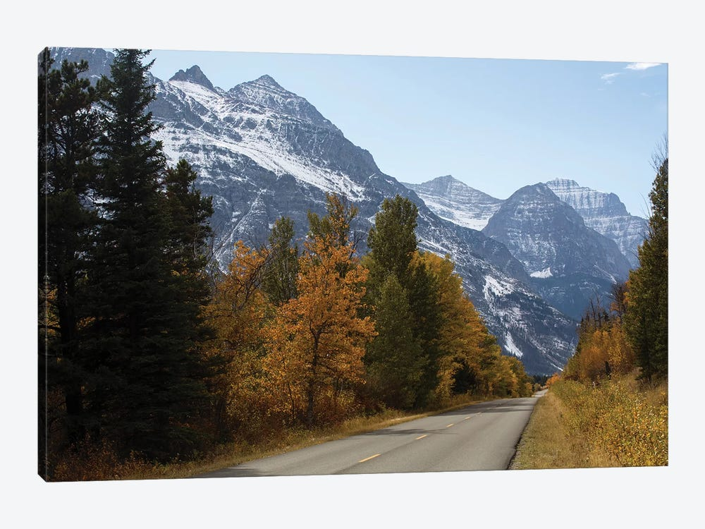 Trees Along A Road With Mountain Range In The Background, Glacier National Park, Montana, USA by Panoramic Images 1-piece Canvas Art Print
