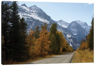 Trees Along A Road With Mountain Range In The Background, Glacier National Park, Montana, USA Canvas Art Print