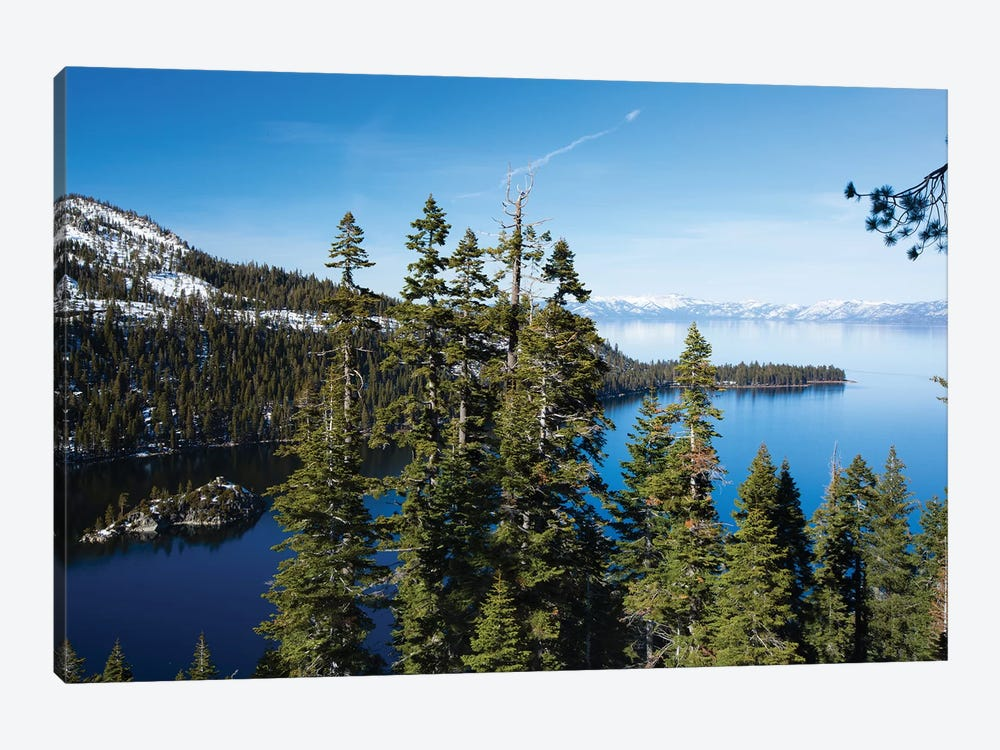 Trees At Lakeshore With Mountain Range In The Background, Lake Tahoe, California, USA II by Panoramic Images 1-piece Art Print