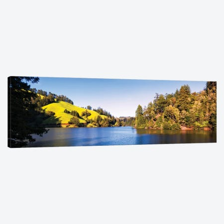 Trees At Lakeshore, Lake Lagunitas, Marin County, California, USA Canvas Print #PIM14970} by Panoramic Images Art Print