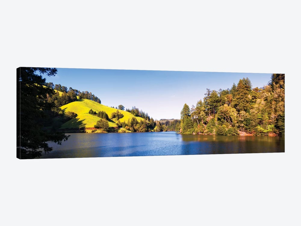 Trees At Lakeshore, Lake Lagunitas, Marin County, California, USA by Panoramic Images 1-piece Canvas Print